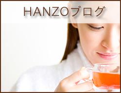 HANZOブログ